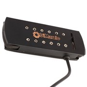 DiMarzio Virtual Acoustic™ Pickup