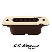 LR Baggs M80 (Active & Passive) Acoustic Guitar Pickup